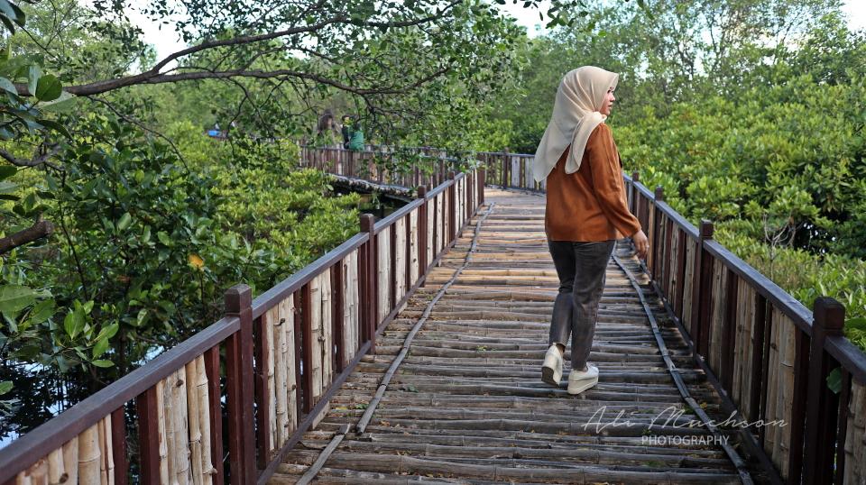 Ekowisata Mangrove Wonorejo Rungkut Surabaya