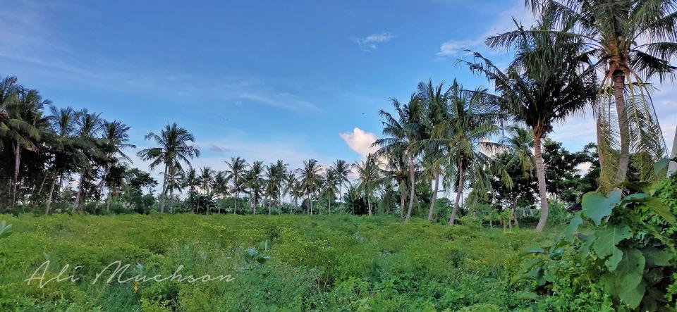 Hari Bumi Tahun 2020 - Desa Dara Kunci - Sambelia, Lombok