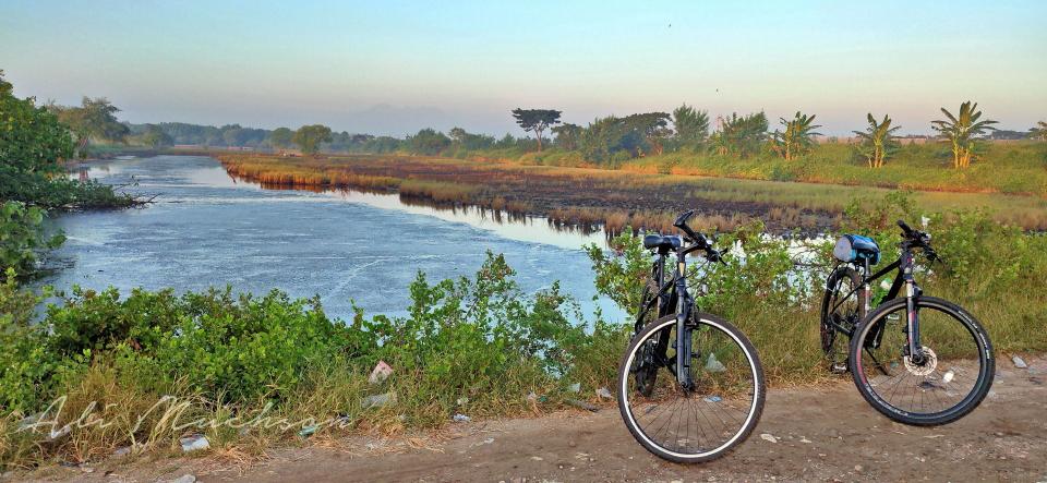 Bersepeda Jauhi Keramaian, Nikmati Oksigen Mangrove Wonorejo