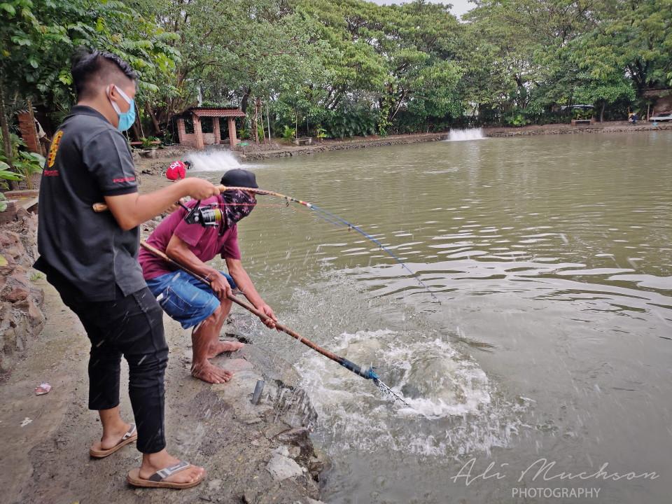 Harga Sensasi Serunya Tarik Joran yang Harus Dibayar di Monstero Fishing Park Sidoarjo