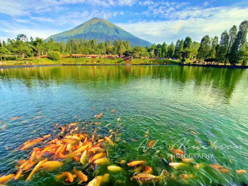 Embung Kledung : Cantiknya Bak Danau Kawaguchi Jepang